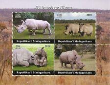Madagascar 2018 MNH White Rhinoceros Rhinos 4v M/S Wild Animals Stamps