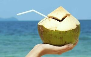3PCS Healthy and Fresh Natural Young Green King Coconut Water