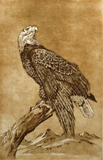 Suzanne American Bald Eagle Original Art Intaglio Etching Hand Sign Make Offer