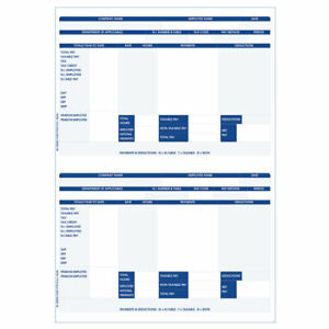 IRIS PAYSLIPS COMPATIBLE BLUE - IRLPAY x 1000 Inkjet/laser printers 2 per sheet