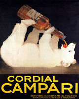 POSTER WHITE BEAR DRINKING CORDIAL CAMPARI ITALY DRINK VINTAGE REPRO FREE S/H