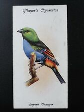 No.36 SUPERB TANAGER - Aviary and Cage Birds by John Player 1933