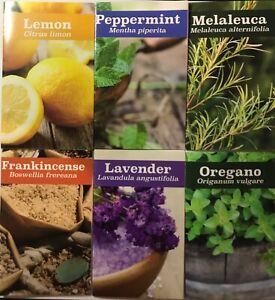 6 Essential Oils pamphlets