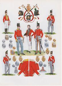 Vintage British Uniform Print 1812-1815 Infantry Of The Line Officers