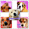 Puppy Stickers x 15 - Party Supplies, Puppy Birthday Party - Vets - Dogs Love