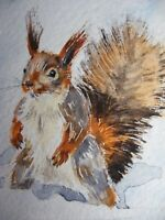 Watercolor Painting Squirrel Snow Winter Wildlife Nature ACEO Art