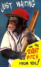 """VINTAGE """"Just Waiting For the Right Pitch"""" Chimp In Baseball Uniform CHROME PC"""