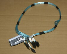 Dell Amphenol SFF-8484 (Device) to 4 x SAS/SATA 7-pin (Host) Reverse Cable 80cm