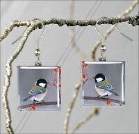 BIRD CHICKADEE BLACK CAPPED #4 SQUARE GLASS CABOCHON EARRINGS -jin7Z