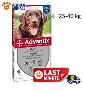 Advantix Bayer 4 pipette per cani da 25-40 kg - Antiparassitario  ex oltre 25 kg