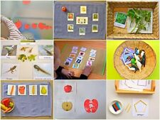 Montessori Practical Life, Mathematics, Sensorial, Cultural/Geo & Language Album