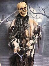 Ooak Halloween Prop Skeleton