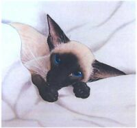 LGE LTD EDITION SIAMESE CAT KITTEN PRINT FROM ORIGINAL PAINTING SUZANNE LE GOOD