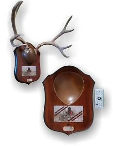 Mountain Mike's Reproductions Digital Plaque Master Deer Mount Kit