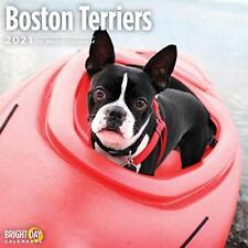 2021 Boston Terriers Wall Calendar by Bright Day, 12 x 12 Inch, Cute Dog Puppy