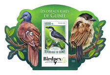 Guinea 2017 MNH Rare Birds Birdpex Sabine's Puffback Tchagra 1v S/S Bird Stamps