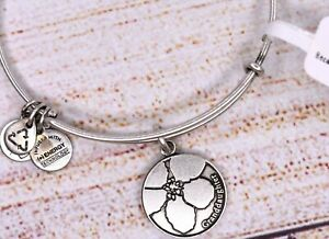 NEW Alex and Ani Because I Love You Granddaughter Charm Bangle Silver Bracelet