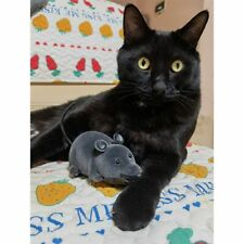 Electronic Remote Control Mouse Pet Cat Toy Plush Rat Toy Dog Kid Novelty Gift