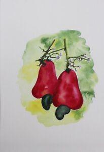 Origial Watercolour Painting-Wall Art-Cashew Fruit