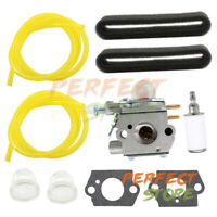 Carburetor Kit For Bolens BL110 BL160 BL425 Carb WT-973 41AD160G965 21AK125G965