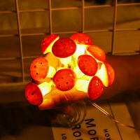 10/20LED Mushroom Wire String Fairy Light Battery Operated Xmas Party Decor 2/3M