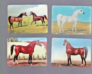 Swap Playing Cards 4 arabian horses