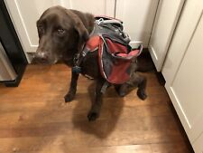 REI Medium Dog Saddlebag Backpack