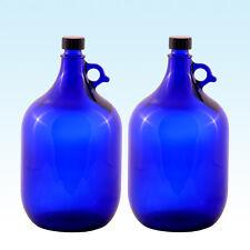 2x Galón 5 litros / glasballonflasche Globo de cristal botella azul / agua Vino