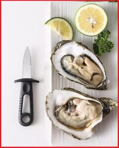 Stainless Steel Oyster Shucking Knife with Thumb Guard