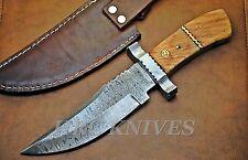 "DB15 ~ 11"" USA Custom BOWIE Damascus BIG GAME TRACKER KNIFE W/ OLIVE WOOD - USA"