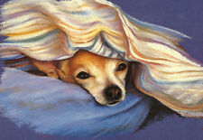 "CHIHUAHUA DOG ART PRINT - Head Study ""Under the Blanket"""