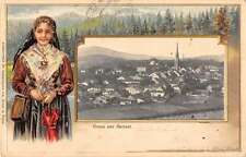 Zwiesel Germany Gruss aus young lady scenic view of town antique pc Y15301