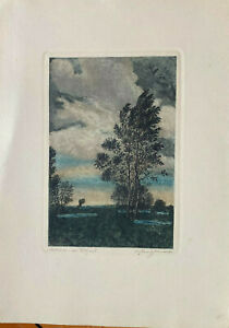 Hans Schindler 1907 Farbradierung Signed° Motif at The Danube Antique Birch