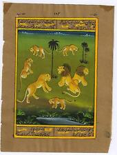 Wild Lion Tiger Painting Water Color Hand Painted Miniature Old Paper Painting