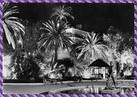 CANNES Jardins de la croisette la nuit