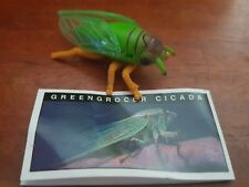 Yowies -  GREENGRICER CICADA - With Papers - FAST POST