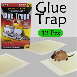 12 Pcs Mouse Rat Snake Mice Bugs Trap Catcher Board Kitchen Fast Delivery