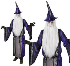 Procedura guidata per adulti costume stregone Gandalf Stregone Halloween Completo