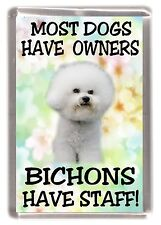 "Bichon Frise Dog Fridge Magnet ""Most Dogs .... Bichons Have Staff!"" by Starprint"