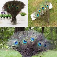 Wholesale 10Pcs Natural Peacock Tail Feathers DIY Craft Wedding Decoration