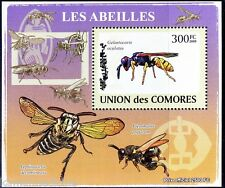 Big-Eyed Toad Bug, Insects, Comoros 2009 MNH Sheet   (A4n)