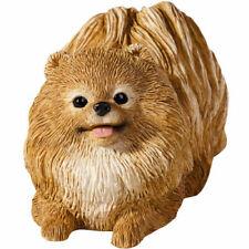 â™› Sandicast Dog Figurine Sculpture Pomeranian Pom Pom