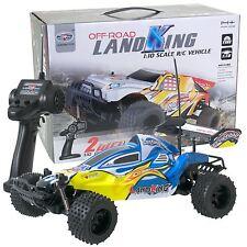 Remote Radio Control RC LandKing 1:10 Off-Road Speed Racing Buggy Car 40MHz BLUE
