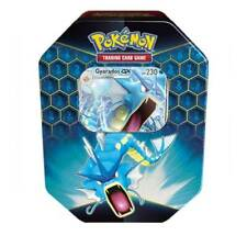 Gyarados Tin HIDDEN FATES Pokemon Online Codes SENT BY eBay Messenger PTCGO