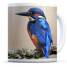 Blue Kingfisher - Drinks Mug Cup Kitchen Birthday Office Fun Gift #15795
