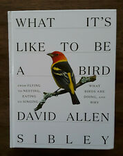 What It's Like to Be a Bird by David Allen Sibley (2020, Hardcover) BRAND NEW