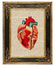 Heart #2 Art Print on Vintage Book Page Medical Anatomy Illustration Decor Gifts
