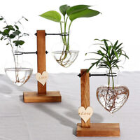 Hydroponic Glass Pot Planter Bottle Heart Shaped Dried Flower Arrangement Vase