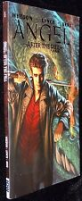 Angel After the Fall Volume 1 Joss Whedon New Paperback Graphic Novel Book MT