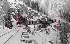 Denver & Rio Grande Western (D&RGW) Engine 461 at Ophir - 8x10 Photo